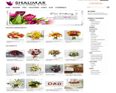More about 1525937316_2_www.shalimarflowers.com.png